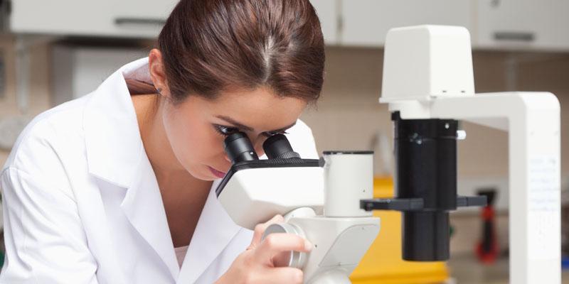 Od myszy laboratoryjnej do pacjenta